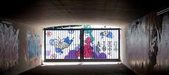 Don't Pass Go (Mr Baggins) Tags: streetart graffiti johannesburg jozi ladyaiko