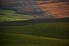 """Colori invernali della Valdorcia ("""" paolo ammannati """") Tags: italy italia raw tuscany fields siena 1001nights valdorcia campi paoloammannati 1001nightsmagiccity"""