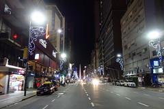 DSC04080 (Sergio Uribe) Tags: argentina navidad buenosaires