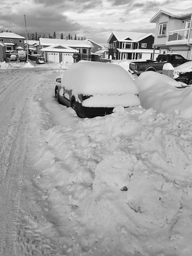 Snow melt followed by two epic snow days in Whitehorse, Yukon.
