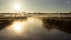 Fsinger Au (Luziferian) Tags: light sun mist reflection misty fog backlight river germany landscape haze foggy hazy schleswigholstein