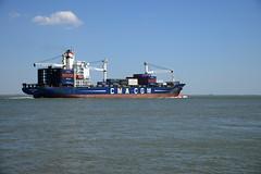 Nicolas Delmas (larry_antwerp) Tags: netherlands ship nederland vessel container schelde  schip   hulst      baalhoek nicolasdelmas 9220861