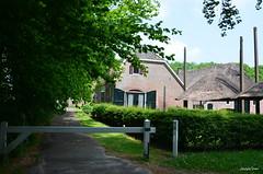 Zwolle Landed Soeslo (JaapCom) Tags: trees holland tree farmhouse haystack landed hooiberg zwolle overijssel boerderij historisch landgoed wijthmen soeslo jaapcom