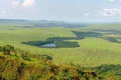 Le lac bleu, Rserve de la Lesio-Louna, CONGO - 28/11/2014 (brun@x - Africa: birds & more) Tags: africa landscape nikon congo paysage afrique brazzaville savana savane lacbleu savanes batk d7000 plateaubateke lesiolouna batekeplateau brunoportier