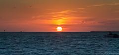 sunset in Key west (Karthik Andugulapati) Tags: blue sunset sun dusk keywest pictureperfect rightmoment