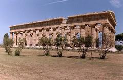 Greek temple, Paestum, Italy (hay579) Tags: italy campania paestum greektemple
