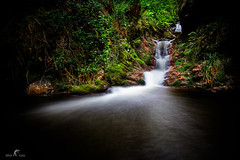 Solitude ... (Mick Cam Photography) Tags: trees france tree water canon eos waterfall long exposure ardennes amateur poselongue eos6d mickcam
