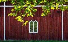 Steninge slott, May 8, 2016 (Ulf Bodin) Tags: window wall barn se spring sweden outdoor sverige scandinavia uppland mrsta stockholmsln steningeslott canoneos5dmarkiii canonef100400mmf4556lisiiusm vrlada