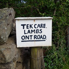 You have been warned (gowersaint) Tags: england plants white black sign wall rural warning fence fun countryside bush different britain stones joke lakedistrict tourists cumbria laugh lambs local roadside obstacle crummockwater request dialect cumbrian rannerdale