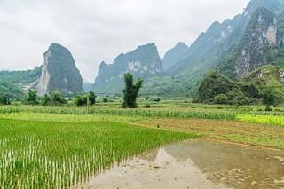 cao bang - vietnam 15