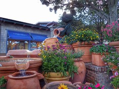 Mickey watering the flowers (AlexanderCreativePhotography) Tags: fountain topiary mickey marketplace disneysprings