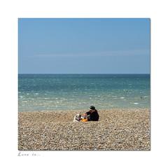 26/52: Pets (hehaden) Tags: sea dog man beach sunshine square sussex brighton bluesky pebbles waterbottle 52photos2016