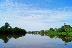 Double grid. Miri River, Sarawak (picaedo) Tags: sarawak sonyalpha550