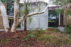 internal courtyard (ghee) Tags: heritage architecture canon concrete sydney australia nsw kuringgai 6d lindfield ghee gwp davidturner brutialism guywilkinsonphotography utskuringgaicampus universityoftechnologykuringgaicampus