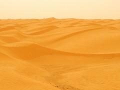 The Sahara in the Kebili Governorate (     ) (twiga_swala) Tags: sea sahara landscape sand scenery dune tunisie erg   kebili  kbili   governorate  gouvernorat