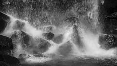 water's own delightful dance (lunaryuna) Tags: bw detail water monochrome blackwhite waterfall iceland droplets rocks lunaryuna svartifoss slowingdown skaftafellnationalpark southiceland waterdance liquidbeauty