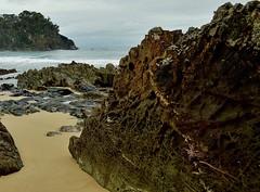 Honeycomb. (jack eastlake) Tags: beach nude bay coast south valley nsw geology far bermagui nudists bega armands naturists