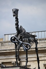 Hans Haacke - Gift Horse (pjpink) Tags: uk england sculpture horse london art skeleton spring britain may trafalgarsquare 2016 haacke hanshaacke gifthorse 4thplinth pjpink forthplinth