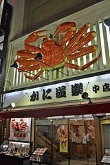 The giant crab (Osaka - ) (Doncardona) Tags: trip travel japan giant restaurant nikon asia crab adventure journey osaka nihon asiatrip 3100 nikon3100  worldtraveler jpworldtraveler