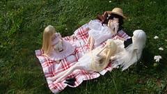 / picnic (merry-chan) Tags: outside doll picnic meeting super sd saber dd dollfie volks 13 pandora alter kosmos hatsune miku arturia dollfiedream saeko aerynn