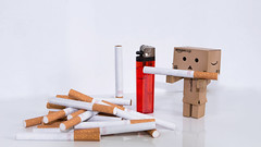 Smoking Danbo (EOSPhotography2014) Tags: home canon mall eos cigarette smoke picture smoking boring tamron unhealthy karton rauchen pall danbo tamron1750 danboo eos700d