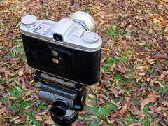 20141130_0101  FUJICA SIX Rectar 1:3.5 f=7.5cm (peter-rabbit) Tags: camera japan canon mediumformat asia 大阪 日本 osaka 135 fujica fujinon f35 75mm 城北公園 posershot 75cm fujica6 s120 フジフイルム fujicasix フジカシックス fujiphotofilm フジカ canons120 fujiphotofilmco rectar takenon2014 fujicasixrectar135f75cm rectar135f75cm rectarf35f75cm