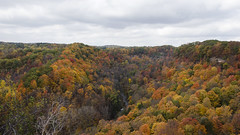 View From the Peak DSK3705 (iloleo) Tags: autumn trees ontario fall nature landscape view cloudy scenic colourful spencergorge nikond7000