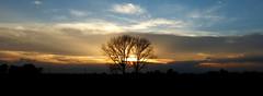 P1000213x (gzammarchi) Tags: italia tramonto nuvola natura explore campagna albero paesaggio ravenna coppia riflesso pianura borgomontone