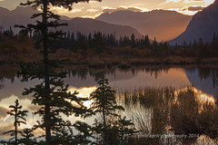 IMG_3657 web (CrispyCritter2) Tags: reflection sunrise quiet peaceful banffnp vermilionlake