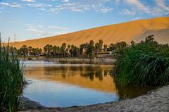 La Naturaleza de un Oasis // The Nature of an Oasis (Kalusifer) Tags: sand desert per arena desierto huacachina nikond7000 suramerica2014