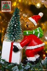Surprise (jerry_springberg) Tags: christmas xmas natal weihnachten navidad decoration noel christmasdecoration jul natale クリスマス nadal kerstmis jól karácsony nadolig joulu 聖誕節 圣诞节 рождество kersfees gwiazdka kristnasko коледа sarcalogos xριστούγεννα jerryspringberg decorationdenoel chrëschtdag рождествохристово krismasi jerryschristmas