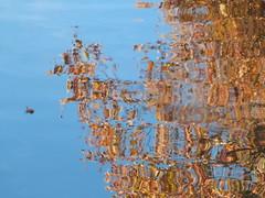 P1280855F (Flo Guichard) Tags: autumn france reflection tree art water colors canal du midi ramonville