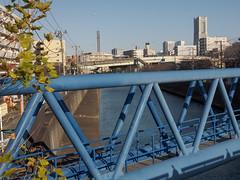 Aqueduct bridge (kasa51) Tags: bridge japan river canal cityscape aqueduct yokohama