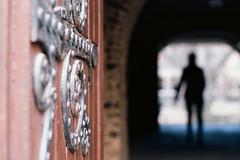 Archway and Door, University College, Toronto (Richard Wintle) Tags: door toronto ontario canada film 35mm downtown arch pentax takumar universityoftoronto doorway 55mm 135 f18 smc ektar mef stgeorgecampus