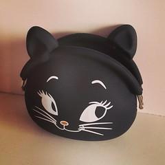 Momento fofura *-* (Acessem: www.rafaelafranklin.com) Tags: bolsa gatinho fofa portamoeda