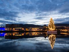 Festival of Lights - Bergen Norway [Explored] (jp3g) Tags: christmas winter tree norway olympus torch bergen omd em5