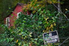 autumn in Nantahala 52 (furrycelt) Tags: autumn trees house mountains fall nature leaves outdoors nc nikon october natural 85mm northcarolina creepy shack appalachian nantahala notrespassing appalachianmountains d600 nikon85mmf14 nikon85mmf14afd