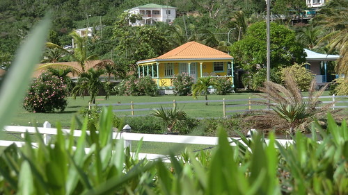 Antigua (Caribbean Island) - Village in a green landscape