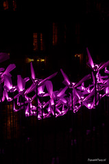Vlinders, on the wings of freedom (Travel4Two) Tags: amsterdam c0 s0 amsterdamlightfestival adl0 2014l 6670k