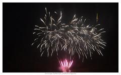 VIADUC DE MILLAU (Dominique Rolland ) Tags: france nikon europe dominique nuit rolland couleur feu artifice aveyron midipyrnes viaducdemillau eiffage d5100 laouleventmeporte