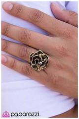 522_ring-brasskit1jly-box01