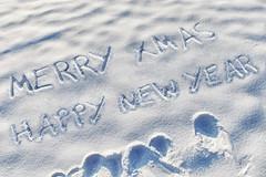 MERRY XMAS HAPPY NEW YEAR (Leo Reynolds) Tags: christmas xmas webthing photofunia xleol30x xxx2014xxx