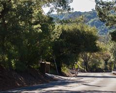 Reliez Valley Road