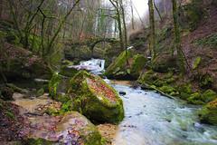 Schiessentmpel waterfalls (Joseguemil) Tags: bridge naturaleza nature ro forest river puente waterfall wasserfall rivire bosque luxembourg brcke fluss cascade wald fort cascada luxemburgo mllerthal schiessentmpel