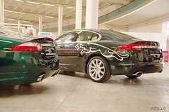 DSC_1683 (Pn Marek - 583.sk) Tags: foto brno jaguar marek autofoto xk xj220 xjrs zraz bvv autosaln galria tuleja fotogalria