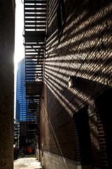 Alley View (mutrock) Tags: usa sun building architecture alley unitedstates florida bricks fireescape jacksonville fl 2016