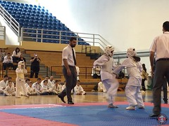 stefanou_15_5_2016_knockdown_214