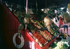 Pineapples and other dreams (Rebecca Dahlstrm) Tags: africa olympus afrika analogue fruitstand mozambique maputo pinapple