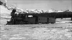 Narrow gauge passenger train up Lizard Head Pass after late fall snow, Colorado. 1890s [1313x726] #HistoryPorn #history #retro http://ift.tt/1RvkMP1 (Histolines) Tags: snow history fall up train colorado head pass retro lizard timeline late after passenger gauge narrow 1890s vinatage historyporn histolines 1313x726 httpifttt1rvkmp1