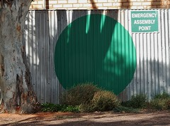 Evacuation Spot (mikecogh) Tags: green fence evacuation spot treetrunk emergency ohs whs whyalla